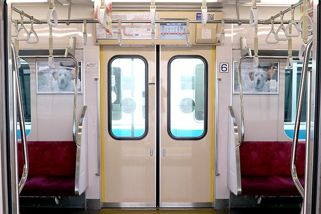 小田急3000形(9次車)客用ドア